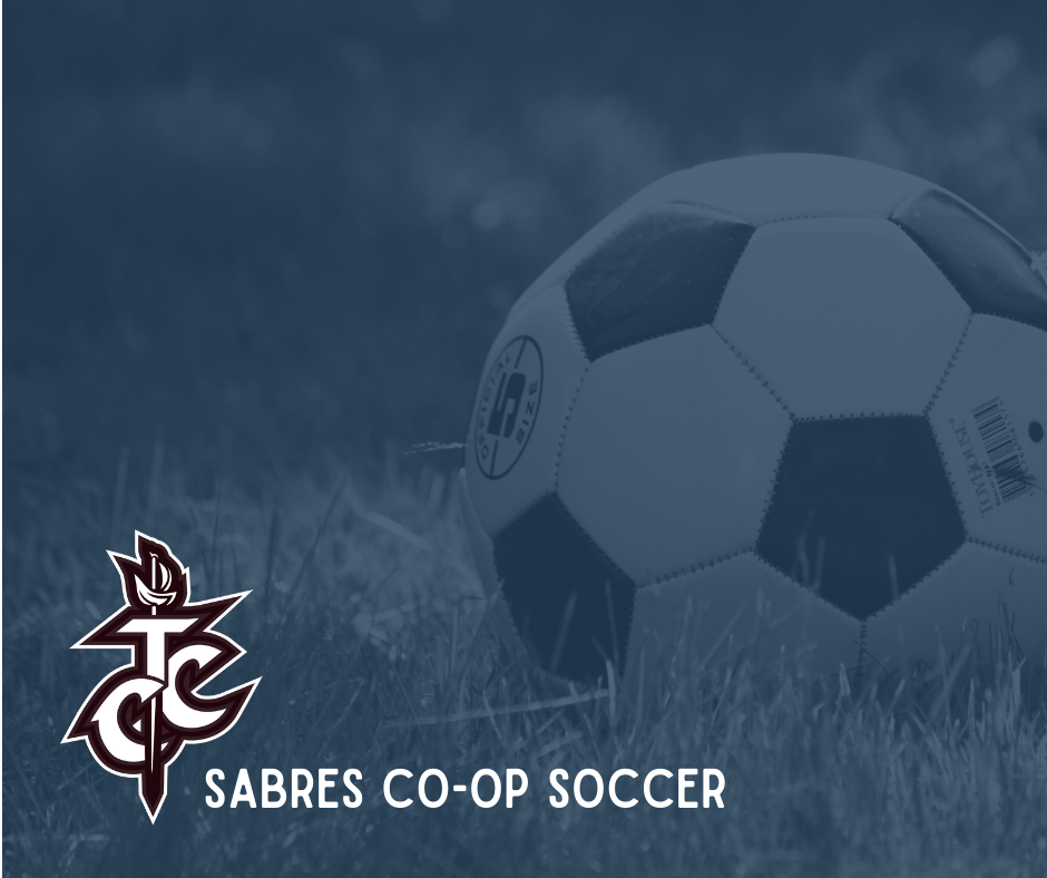 Soccer ball with Sabres team logo